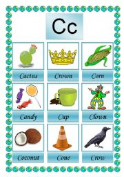 English Worksheets: picture dictioary C 2-2