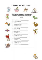 English Worksheet: animals� homes