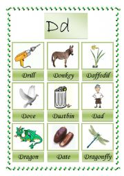 English Worksheets: picture dictioary D (2-2)