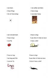 English Worksheets: minibeasts cards