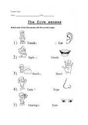 five senses esl worksheet by xinderela. Black Bedroom Furniture Sets. Home Design Ideas