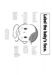 English Worksheets: Parts of th Face