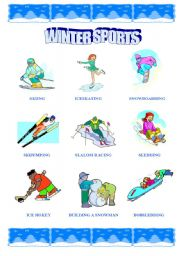 English Worksheets: Winter Sports