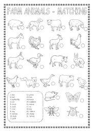 English Worksheets: FARM ANIMALS-MATCHING