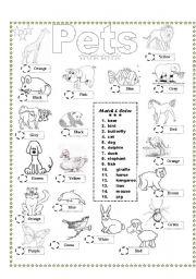 English Worksheets: Coloring & Matching Pets