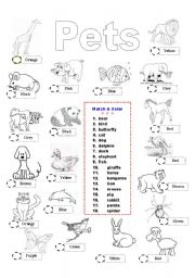 English Worksheets: Pets - match & color