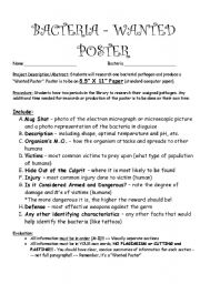 English worksheets: Bacteria Project