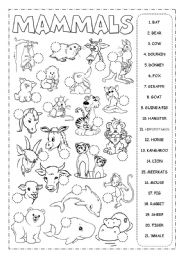 English Worksheet: Mammals Picrionary