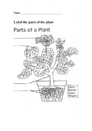 English Worksheet: Label the parts of the plant activity sheet