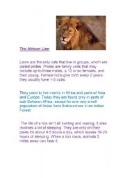 English Worksheets: Reports- The African lion