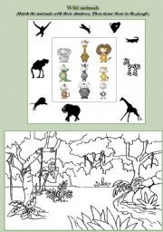 English Worksheets: Wild animals: match and draw!