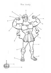 English worksheet: Hercule´s body