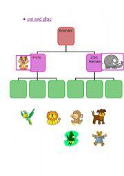 English Worksheets: animals type