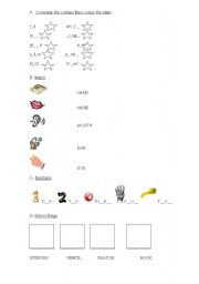 English Worksheets: TEST colours,body,numbers