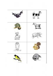 English Worksheets: nocturnal/daytime animals to cut and sort