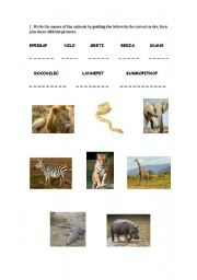 English Worksheets: Animals in Africa