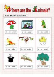 English Worksheet: Prepositions of Place: in, on, under