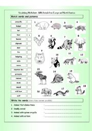 English Worksheet: Vocabulary Matching Worksheet - Wild Animals from Europe & North America