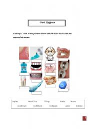 English Worksheets: Oral Hygiene (teeth)