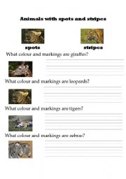 English Worksheets: Animals with spots and stripes