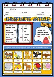 English Worksheets: THE INDEFINITE ARTICLE