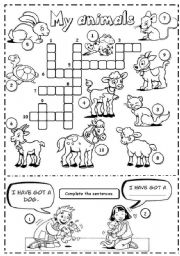 English Worksheets: My animals