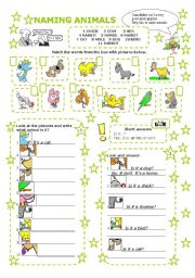 English Worksheets: NAMING ANIMALS - WHAT IS IT?