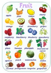 FRUIT PICTURE DICTIONARY