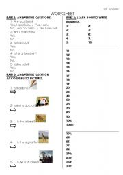 English worksheet: yes/no questions and numbers