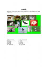 English Worksheets: Scramble