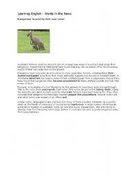English Worksheets: kangaroos