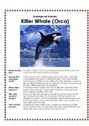 English Worksheets: Endangered Animals Factfind