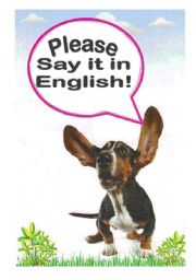 English Worksheets: Say it in English