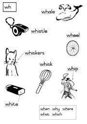 English Worksheet: wh-  Consonant diagraphs