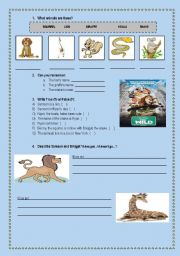 English Worksheets: Movie Session - The Wild :)