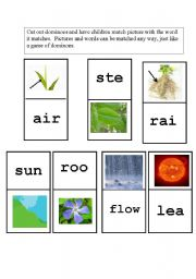 English Worksheet: Parts of a Flower Domino Game