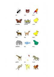 English worksheet: animals