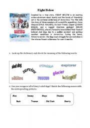 English Worksheets: Eight Below - movie worksheet