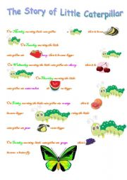 English worksheet: the story of little caterpillar