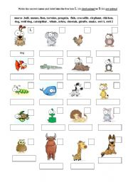 English Worksheets: animals part 1