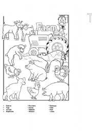 English Worksheets: The farm2