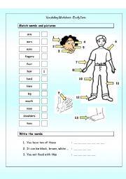 English Worksheets: Vocabulary Matching Worksheet - Body Parts