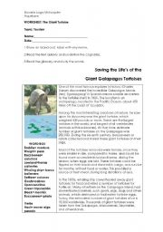 English Worksheets: The Giant Tortoises