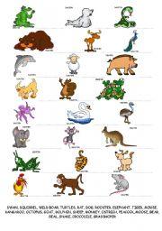 English Worksheets: Animals writing