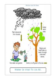 English Worksheet: Water and its Uses