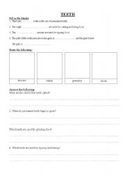 English Worksheets: Science - Teeth