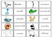 English Worksheets: cartas de animales