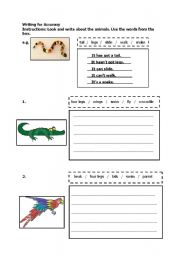 English Worksheets: Writing for Accuracy