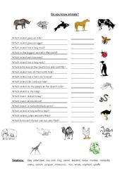 English Worksheets: Do know the animals?