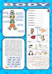 English Worksheets: Fun Body
